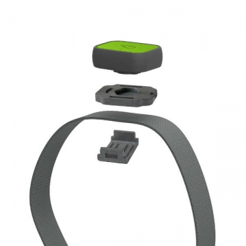 whistle3-gps-pet-tracker-and-activity-monitor-collar-green-snap